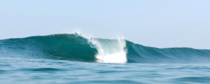 Waves for beginners and advanced surfers.