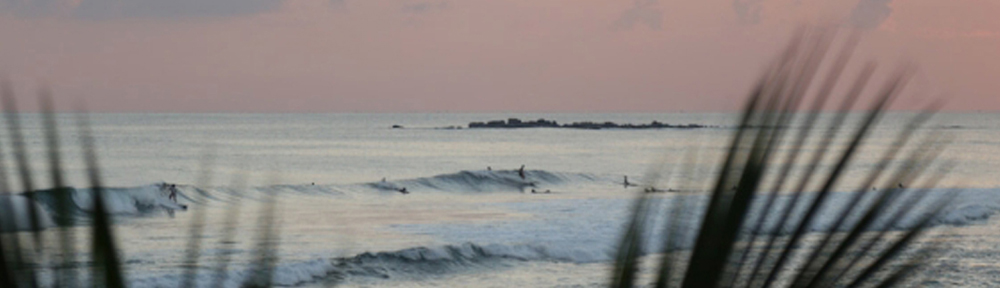 Surfspot Header