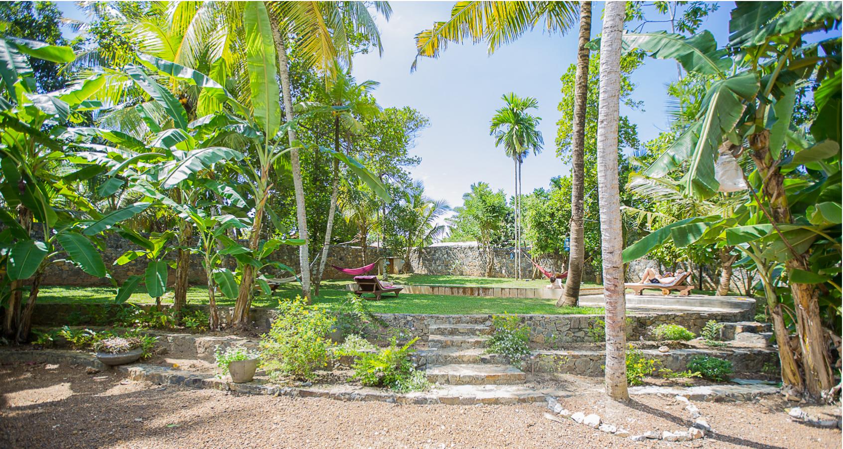 Tropical garden with hammocks.